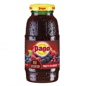 PAGO - Lesní ovoce 0,2 l - balení 24 ks