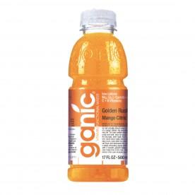 GANIC 0,5 PET Mango - balení 12 ks